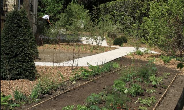 Jardin des magnolias à Garches